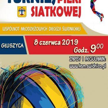 VI Turniej Piłki Siatkowej Katolickiego Stowarzyszenia Młodzieży Diecezji Świdnickiej